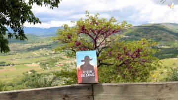 TV07 : A la rencontre de Laurent Salipante (Écrivain)